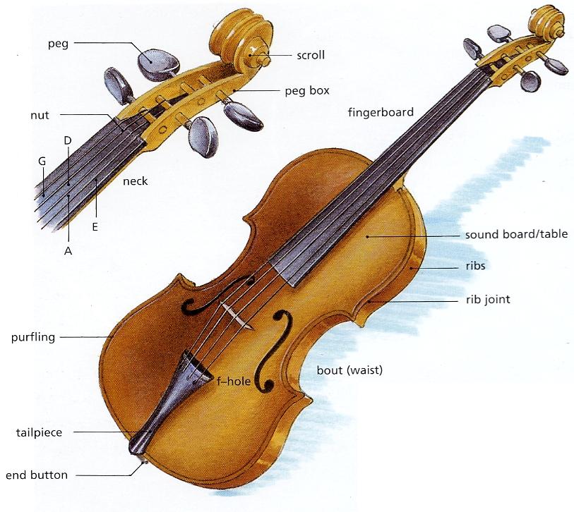 32 Guitar Parts Diagram